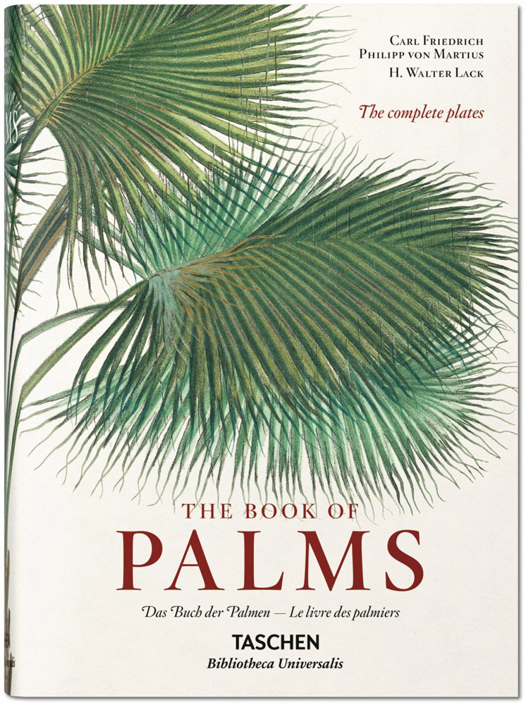 Buch, The Book of Palms - Bild 1