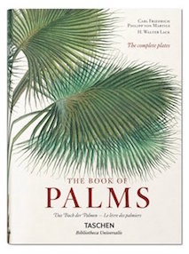 Buch, The Book of Palms