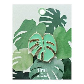 Pin, Monstera